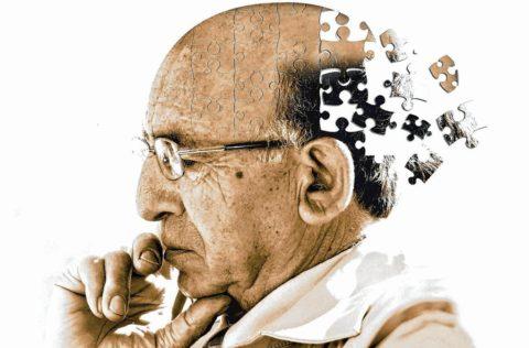 Bacopa puede prevenir la aparición de la demencia