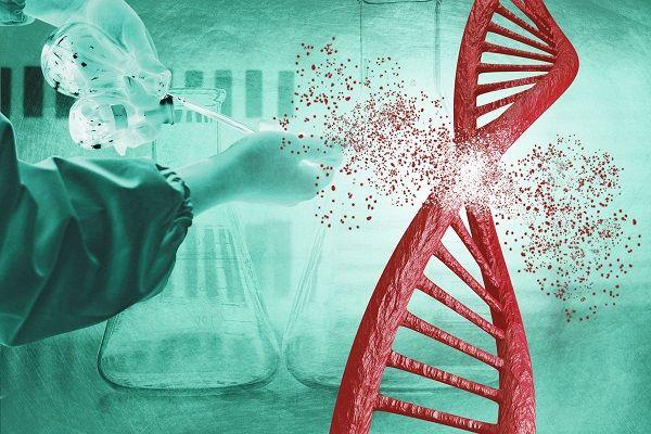 peptidos-mexico-longevidad