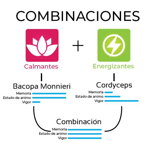 Combinación de hierbas adaptógenas