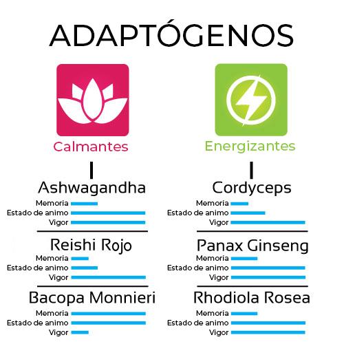 los adaptógenos