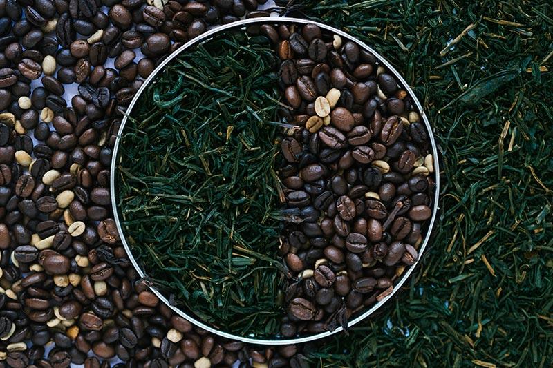 cafeina-y-teanina